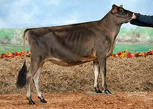 Milk-N-More Vindication Nora-ET