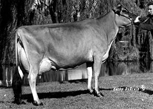 duncan eilene of hlf_94_95