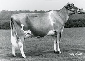 Harmara S J Briana 17S_1989