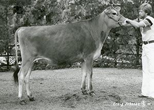 Pleasant Ridge Houplas Holly_1985