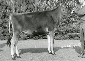 Pleasant Ridge Mullins Deanne_1988