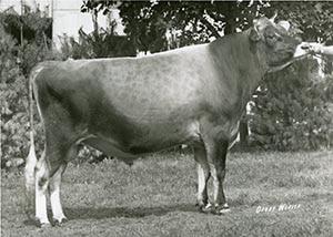 Babes Purlie_1976