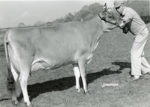 Borgs Valiant Samares_1967