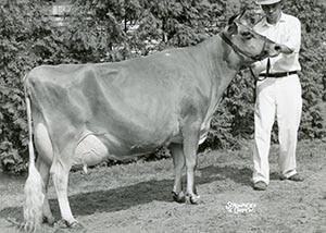 Brampton Gareth Carom_1961