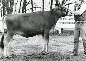 H.V.F. Nancy Doreen_1973