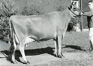 Jims and Brampton Jester Maggie_1966