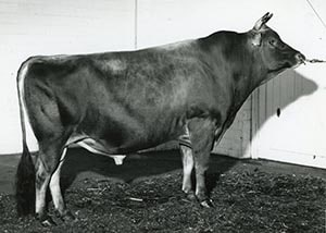 Marlu Royal Supreme_1961