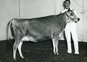 Masterman Jab Lass_1961