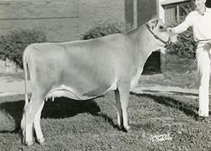 Royal's Lovely Lady_1959
