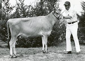 Vaucluse Surville Milo_1974